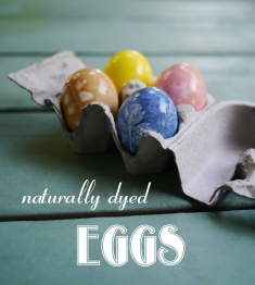 Naturally Dyed Eggs Header