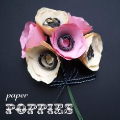 Paper Poppies Header