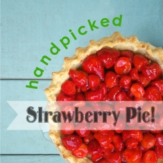Handpicked Strawberry Pie Header