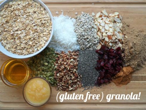 Gluten Free Granola Header