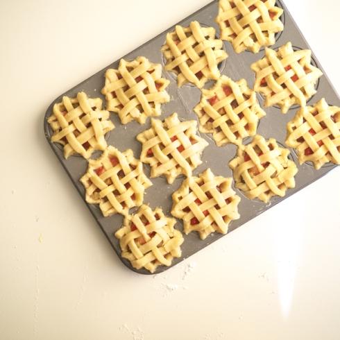 Mini SR Pie 05