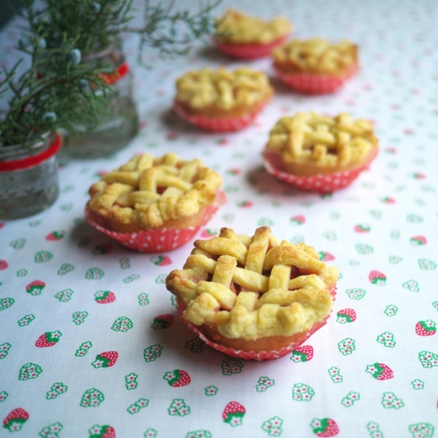 Mini SR Pie 06
